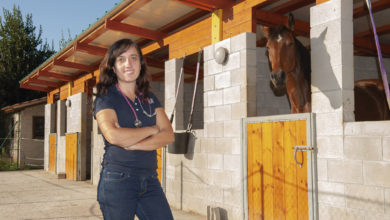 Photo of La Cuadra de Mantilla: La primera clínica veterinaria equina de Cantabria