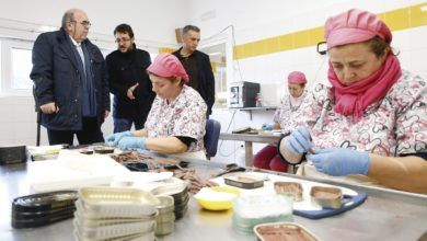 Photo of 'La denominación de origen para la anchoa es una necesidad, y cada vez lo creen más conserveros'