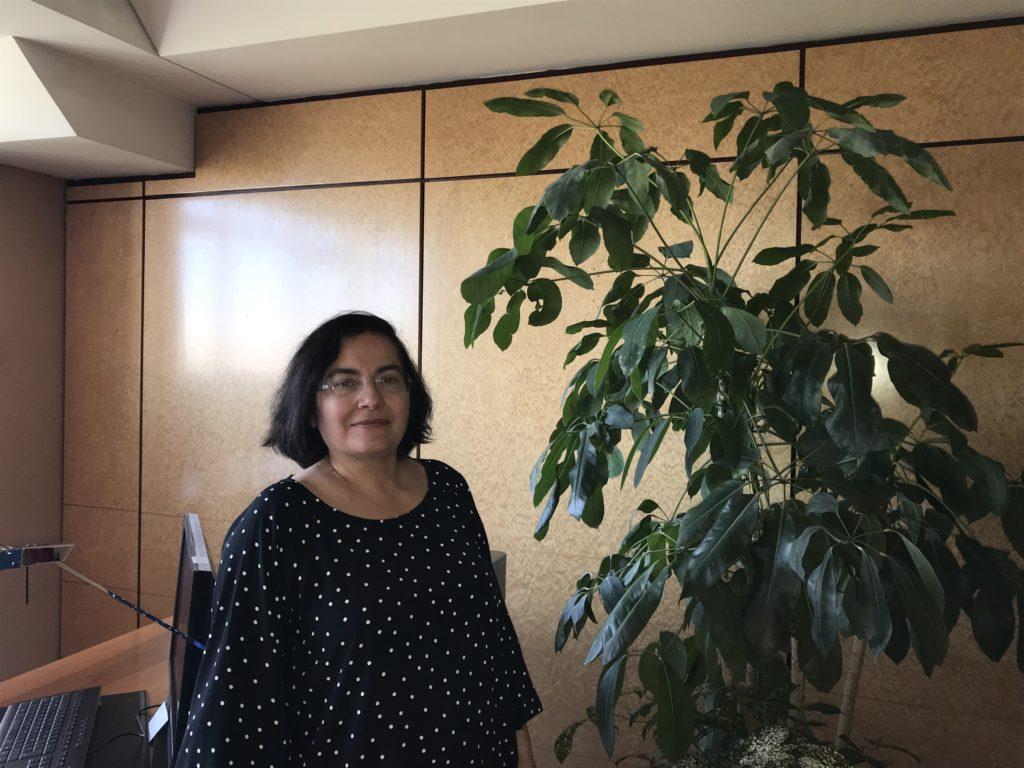 Teresa Frontán, representante de la Comisión Europea en España