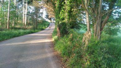 Photo of El interés por el turismo rural hace prever buena ocupación en verano