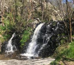 Photo of La ruta de las Fonts de Llívia, uno de los principales reclamos turísticos del municipio pirenaico