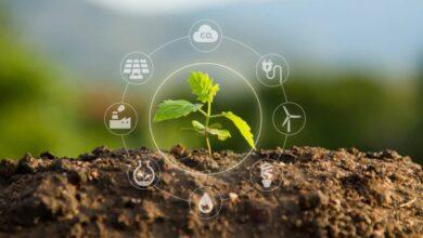 Photo of Cantabria defiende la economía verde como vector de desarrollo económico a medio plazo