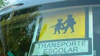 Photo of Competencia multa a cinco empresas de autobuses de Cantabria por reparto de las rutas escolares