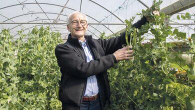 Photo of 'Cantabria es una de las regiones con más potencial agroecológico y eso le podría abrir un gran mercado'