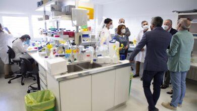 Photo of Cantabria invertirá tres millones en la contratación de casi un centenar de jóvenes investigadores